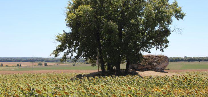 Visite virtuelle du dolmen de la Petite Pérotte, Fontenille (16)