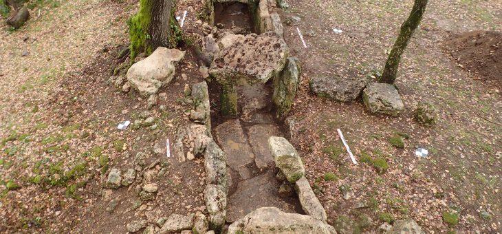 Nettoyage de l'allée couverte de Roquefort (Lugasson, 33)